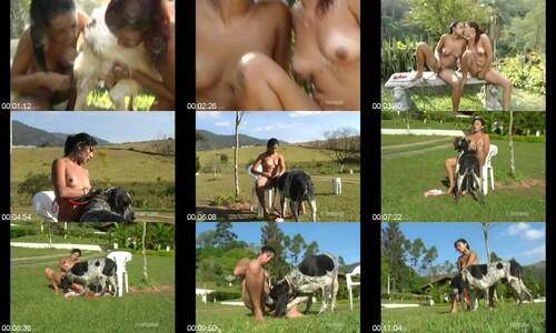 1352 ZS Best Of Stallion Porn m - Best Of Stallion Porn