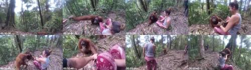 0102 FUN Orangutan Grabs Hold Of Girl And Wont Let Go m - Orangutan Grabs Hold Of Girl And Won't Let Go