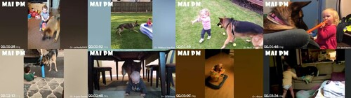 0046 FUN Cute Moments German Shepherd Dogs And Kids Playing Together   Funny Babies And Pets m - Cute Moments German Shepherd Dogs And Kids Playing Together - Funny Babies And Pets