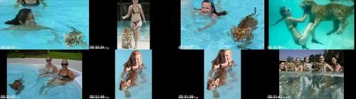 0066 FUN Sexy Girl Swim With Tiger m - Sexy Girl Swim With Tiger