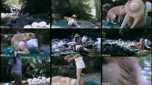 0529 DgSx Frisky And Bear m - Frisky And Bear - Dog Bestiality Video