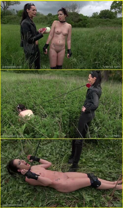 Torture-of-pleasure_d036_cover_m.jpg