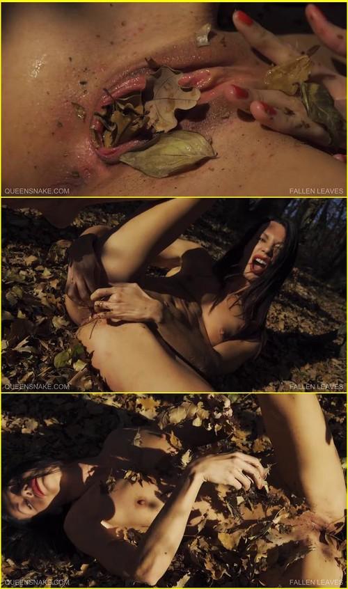 Torture-of-pleasure_d047_cover_m.jpg