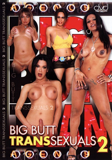 Big Butt Transsexuals 2 (2007)