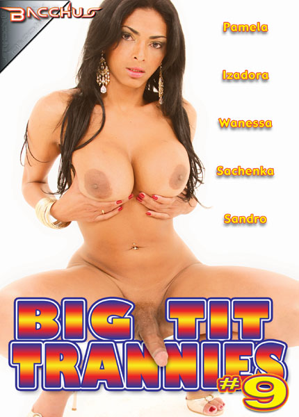Big Tit Trannies 9 (2010)