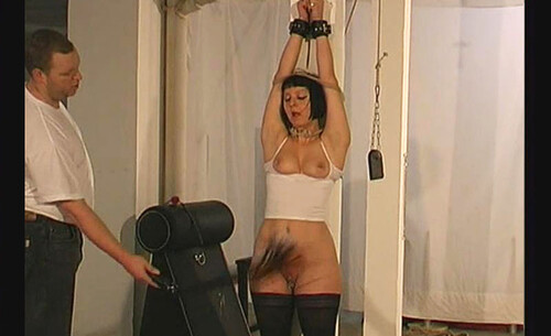 A-new-Lesson-for-Slave-Cat---tx477_m.jpg