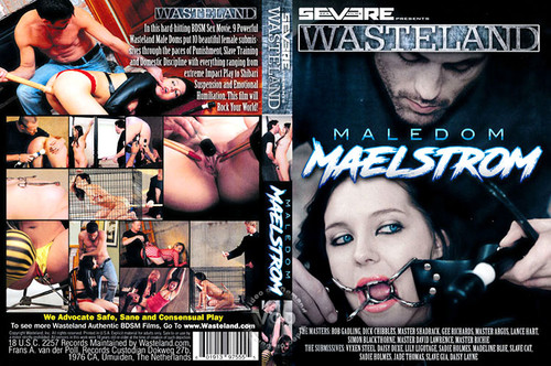 MaleDom-Maelstrom_m.jpg