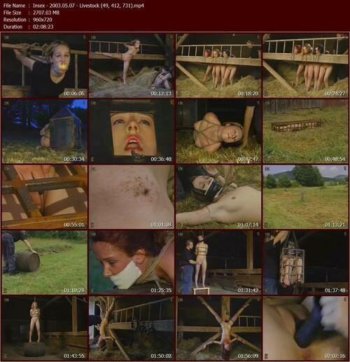 Insex---2003.05.07---Livestock-49-412-731.t_m.jpg