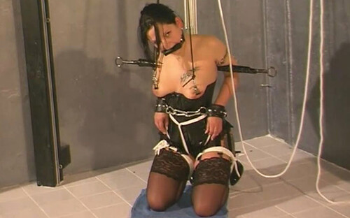 Two-new-Lessons-for-sex-Slave-Dana-1---tx483-1_m.jpg