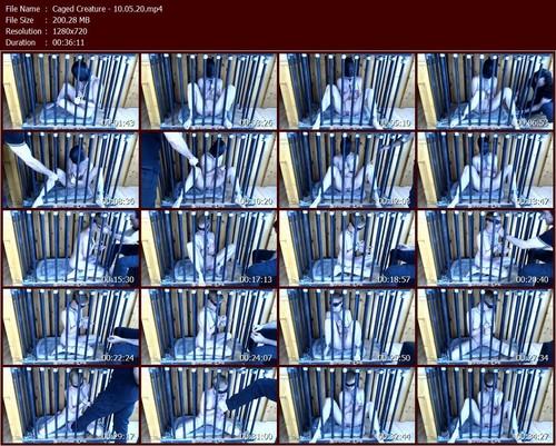 Caged-Creature---10.05.20.t_m.jpg
