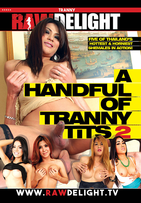 A Handful Of Tranny Tits 2 (2017)