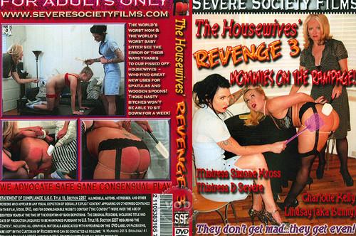 The-Housewives-Revenge-3_m.jpg