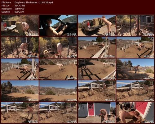 Greyhound-The-Farmer---11.02.20.t_m.jpg