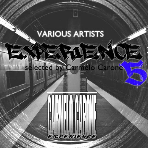 Experience, Vol. 5 (2021)
