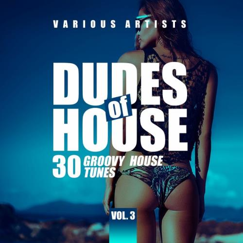 Dudes Of House (30 Groovy House Tunes), Vol. 3 (2021)