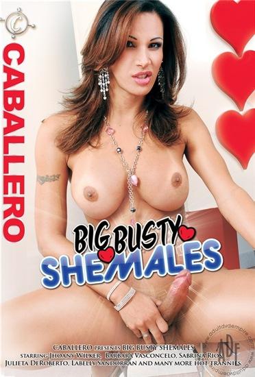 Big Busty Shemales (2013)
