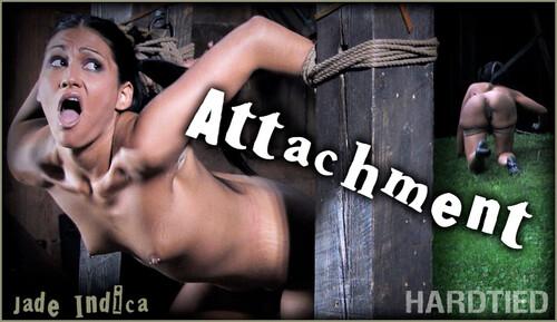 HT-Jade-Indica---Attachment---11.25.20_m.jpg