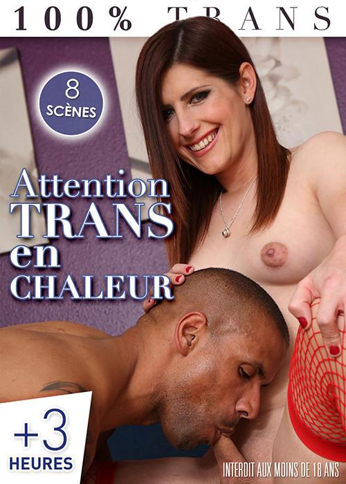 Attention Trans En Chaleur (2018)