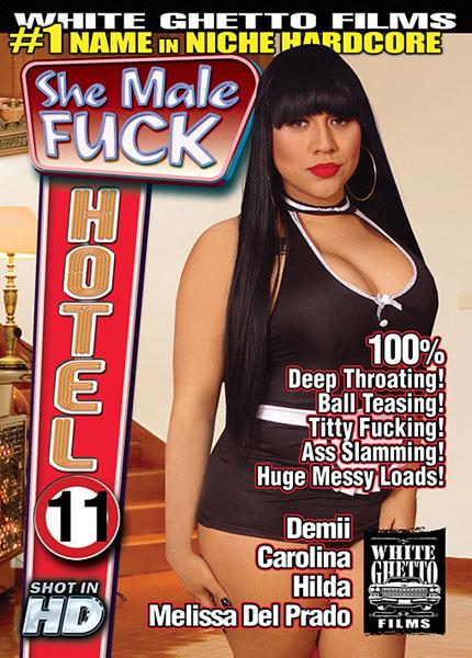 She Male Fuck Hotel 11 (2015)