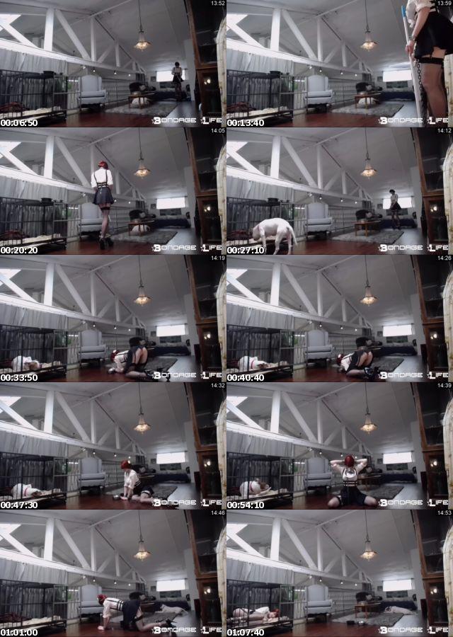 BDSMmania_7215-Rachel_Greyhound_-_Upstairs_Floor_Sweep_s.jpg