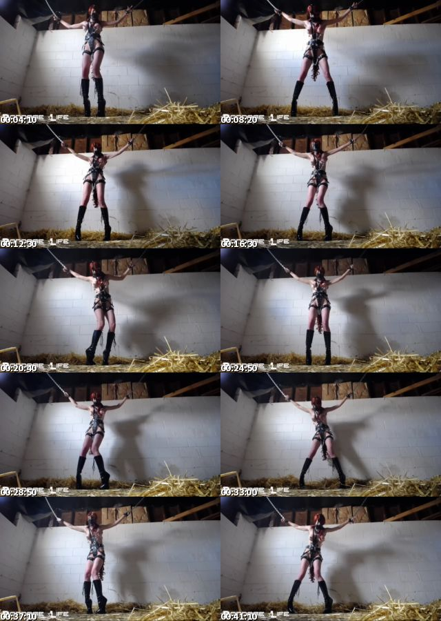 BDSMmania_7184-Rachel_Greyhound_-_Standing_Pony_s.jpg