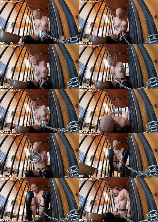 BDSMmania_7011-Rachel_Greyhound_-_Cage_Time_With_Greyhound_1132020_s.jpg