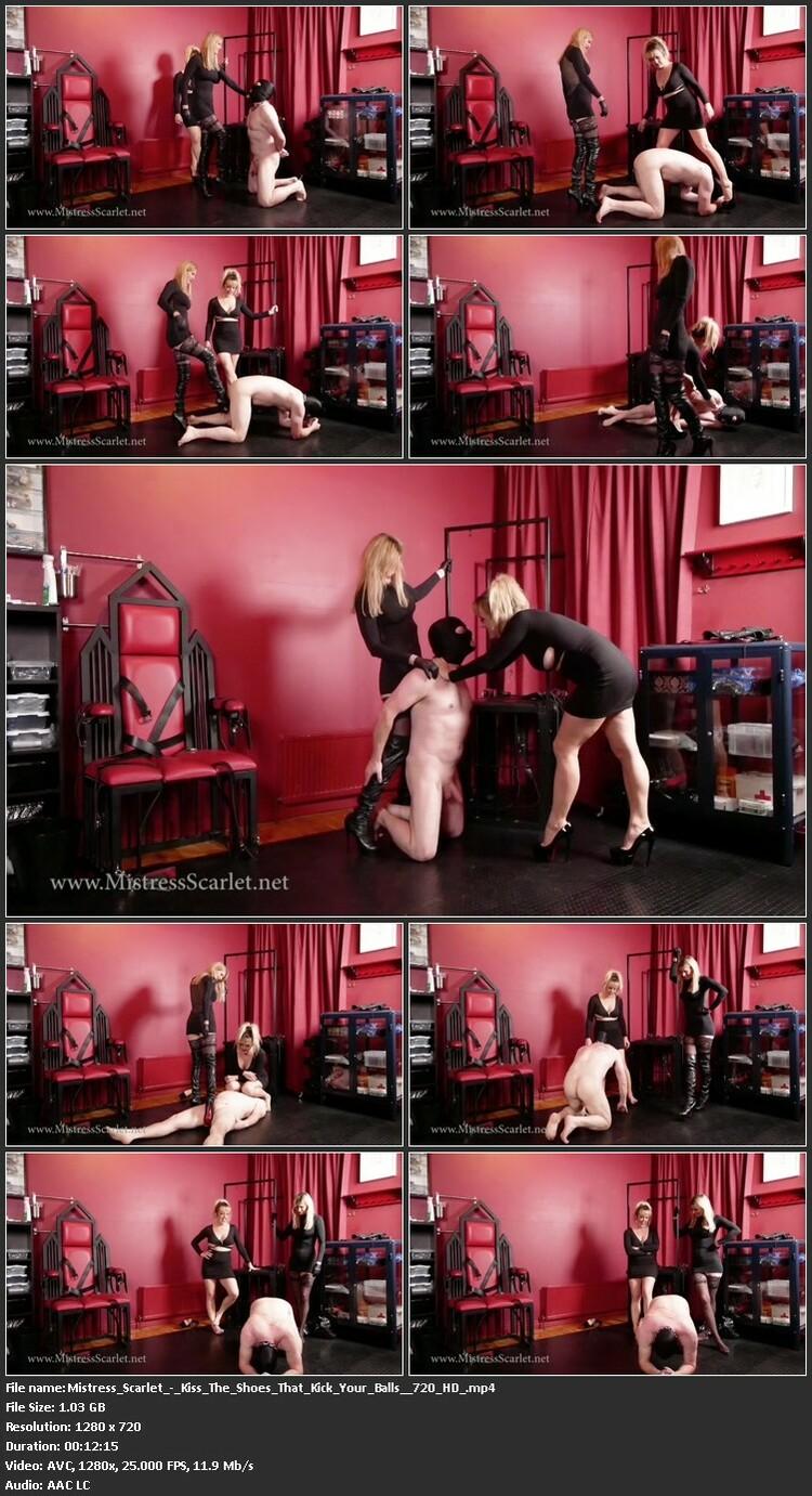 Mistress_Scarlet_-_Kiss_The_Shoes_That_Kick_Your_Balls__720_HD_.mp4_l.jpg
