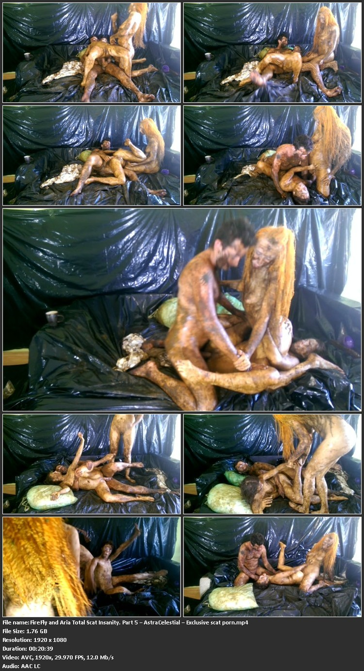 FireFly_and_Aria_Total_Scat_Insanity._Part_5___AstraCelestial___Exclusive_scat_porn.mp4_l.jpg
