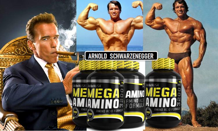 Arnold-Schwarzzenegger-Mega-Amino_l.jpg