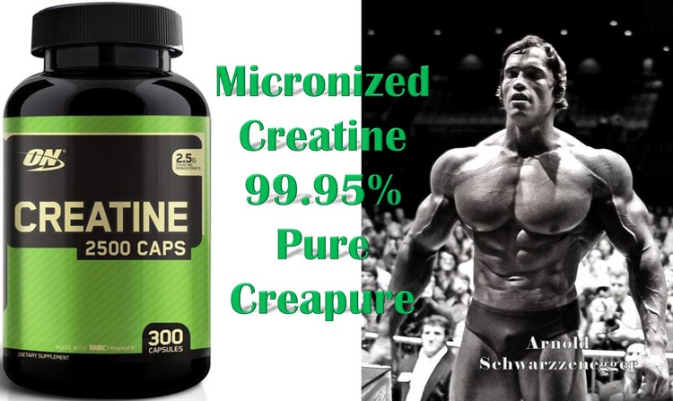 Micronized Creatine by Optimum Nutrition
