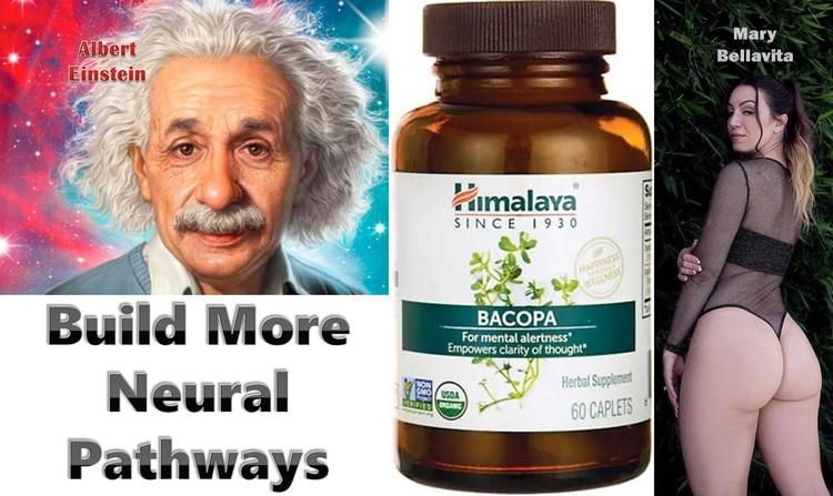 Brainpower Himalaya Bacopa Monnieri