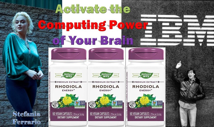 Rhodiola Rosea by Nature's Way