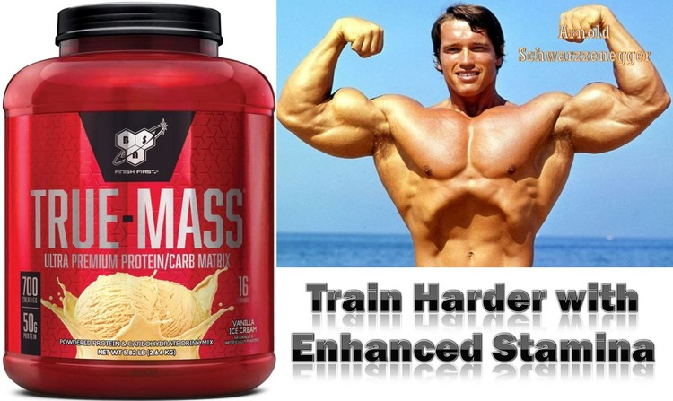 Weight Gainer True Mass by BSN